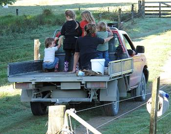 children on the back of the ute