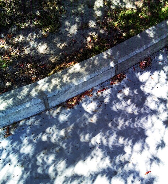 shadows on concrete during an eclipse of the sun